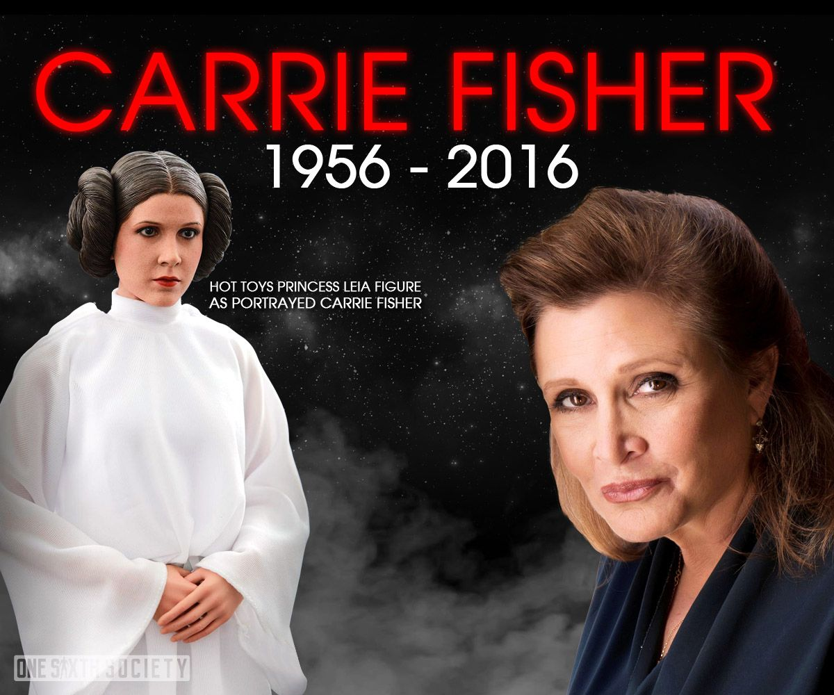 Is the Hot Toys Princess Leia Figure Worth More Now that She is Dead